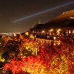 京都の有名・定番観光地に行った感想